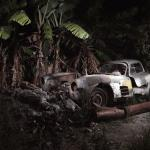 Mercedes-Benz 300SL Gullwing- abandoned under a banana tree.