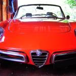 Alfa Romeo Spider Duetto- Launched in 1966