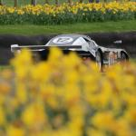 De Cadenet Lola T380 in among the daffodils (photo- S. Mosley)