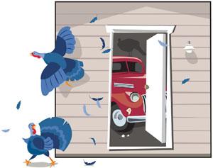 Garage Doors Left Open Lead To Wildlife Visit thumbnail