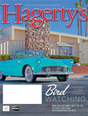 T-Bird Family Ties thumbnail