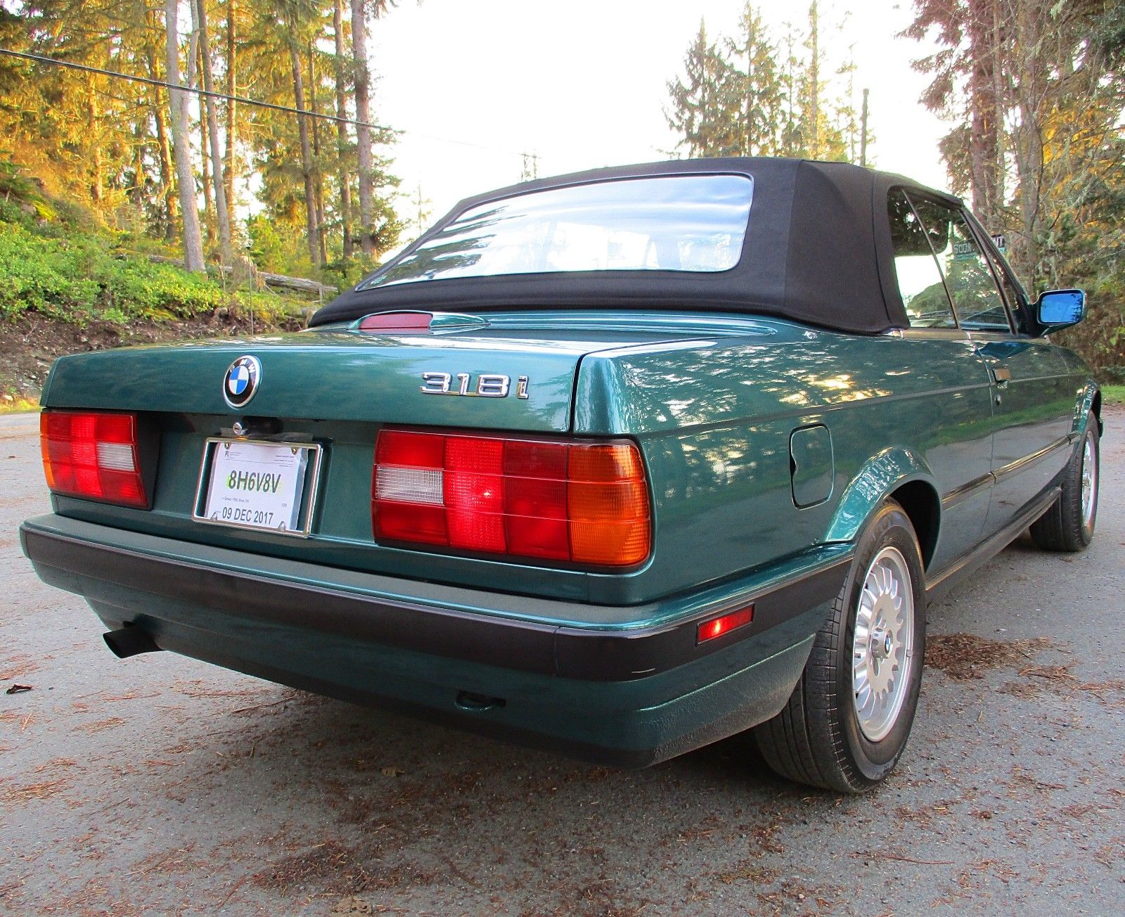 bmw 318i convertible green rear taillight