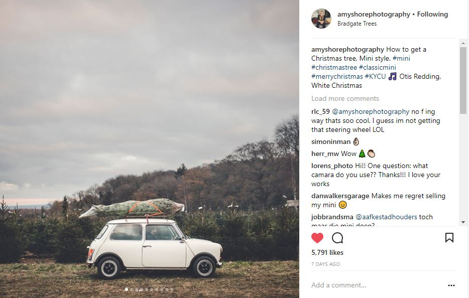 @amyshorephotography christmas trees on old cars