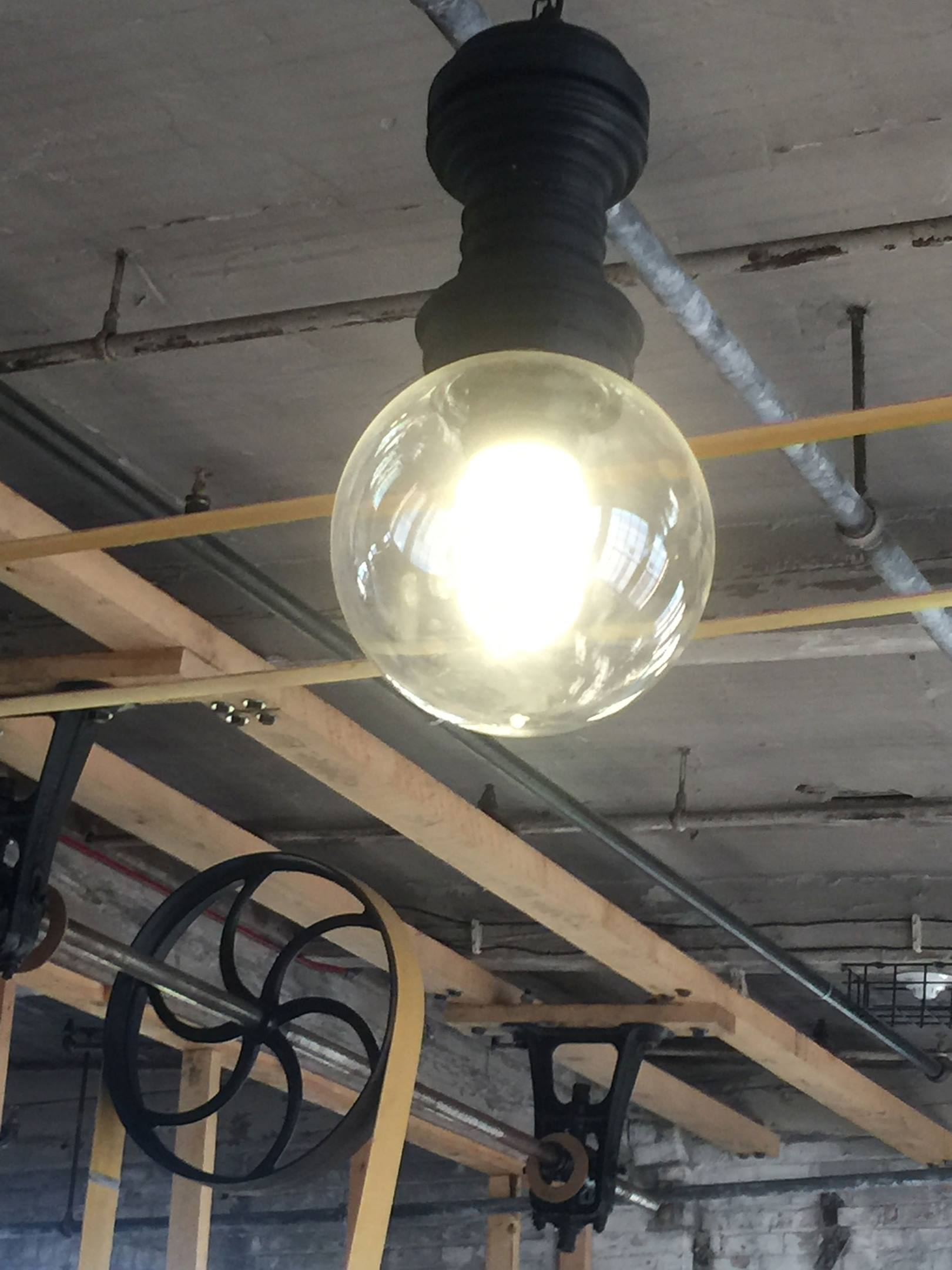 Piquette Plant Light