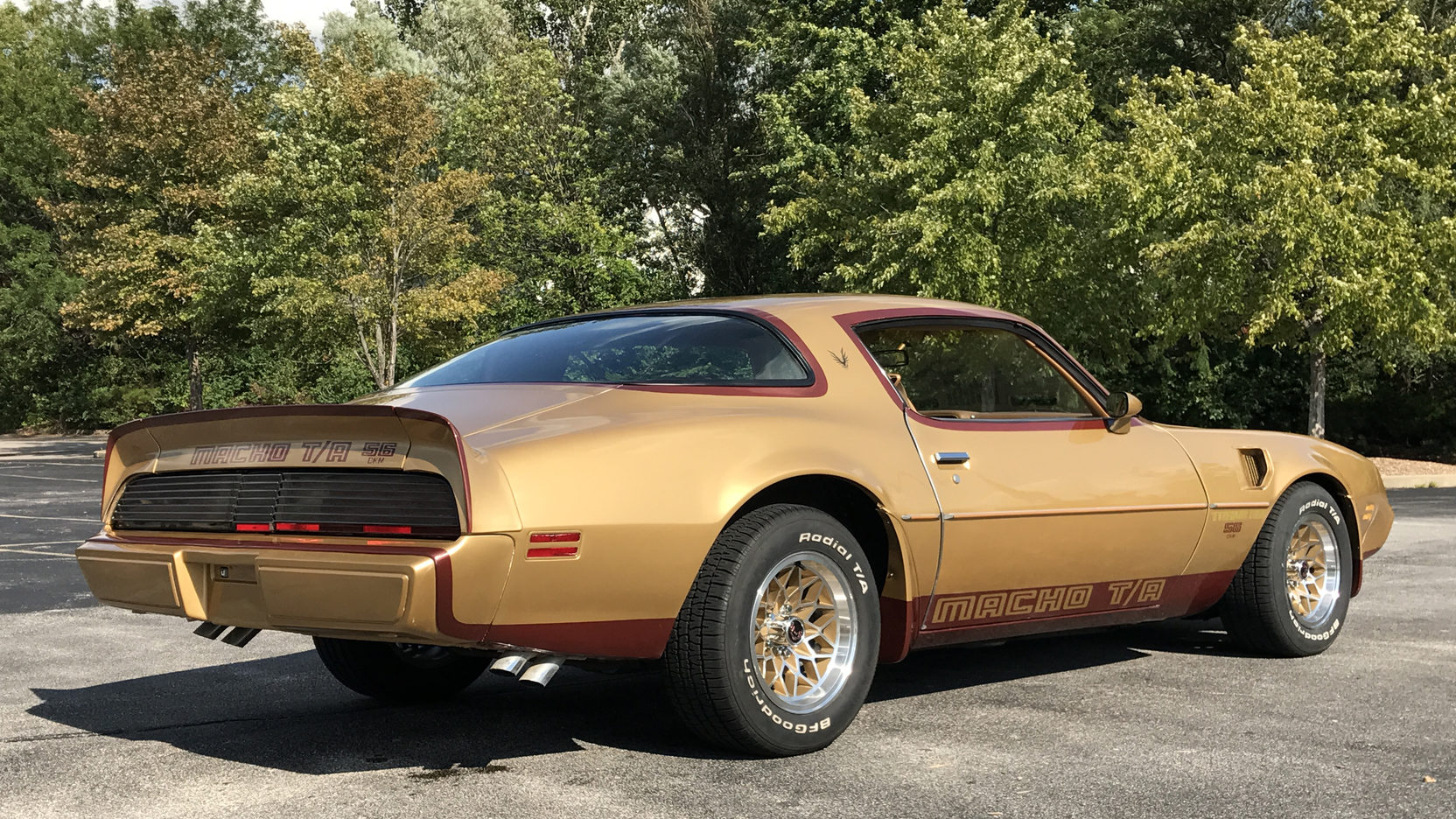 1979 Pontiac Macho Trans Am rear 3/4