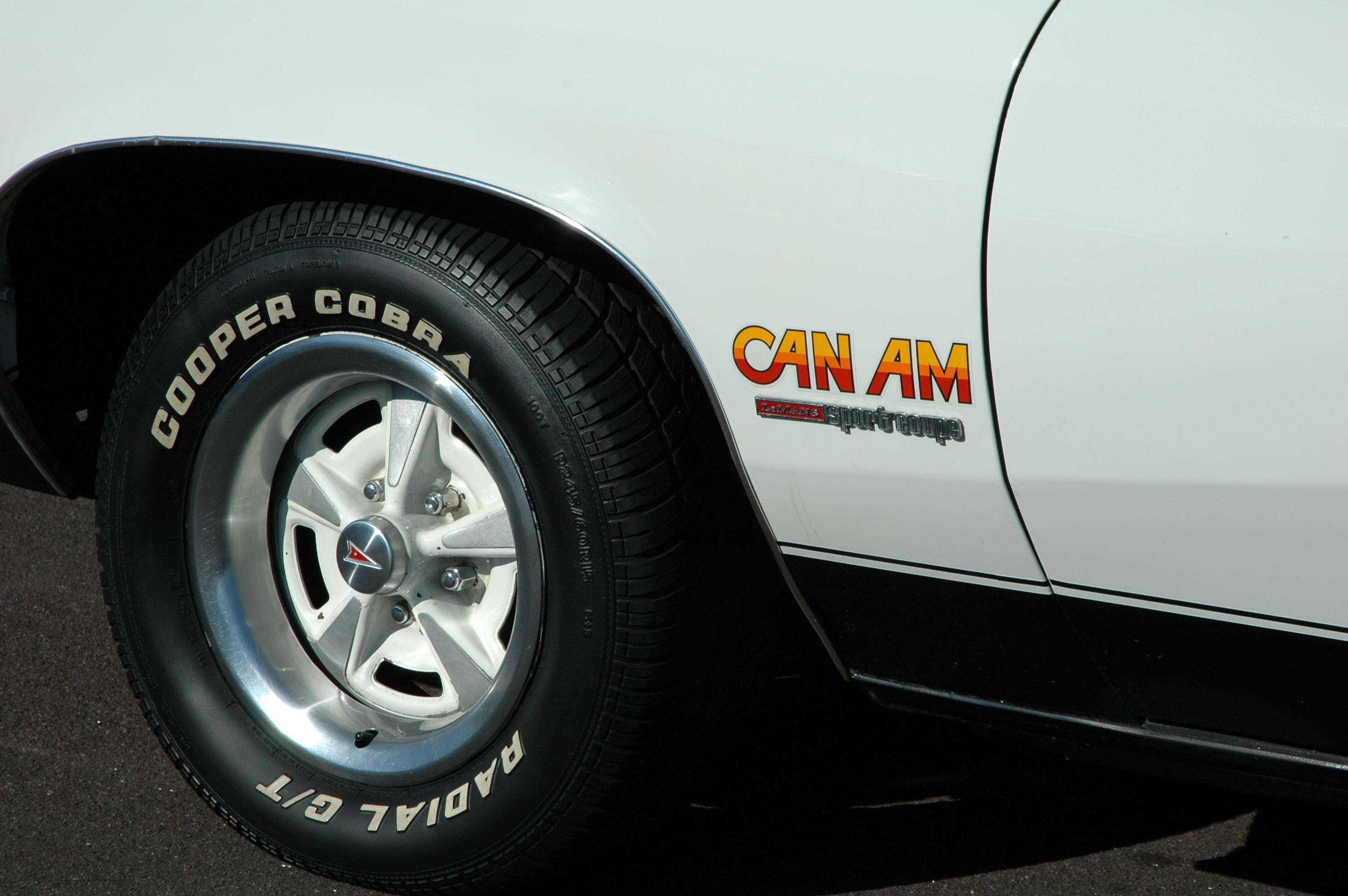 1977 Pontiac Can Am front quarter sticker detail