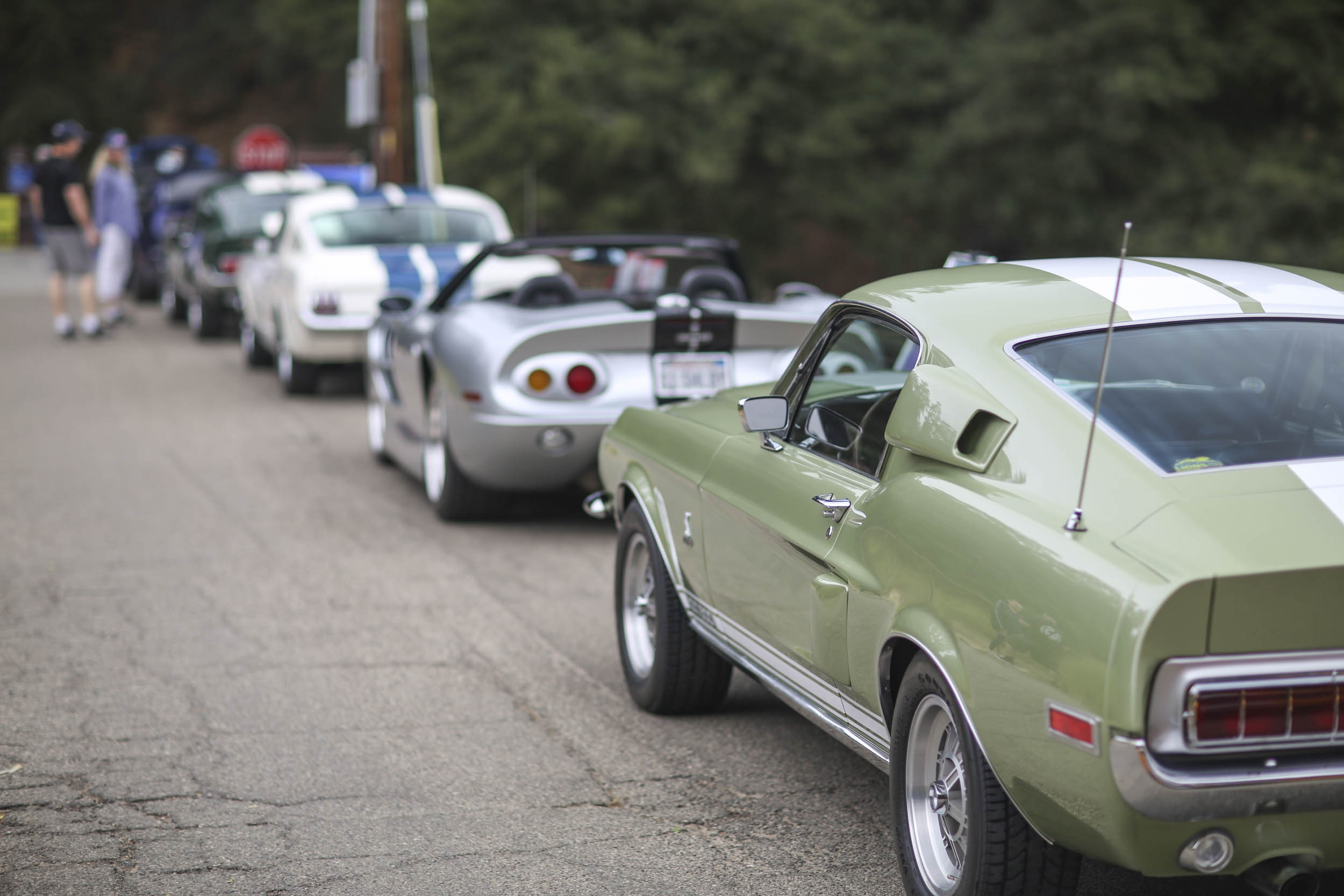 cars lined up at highway earth 2018 show