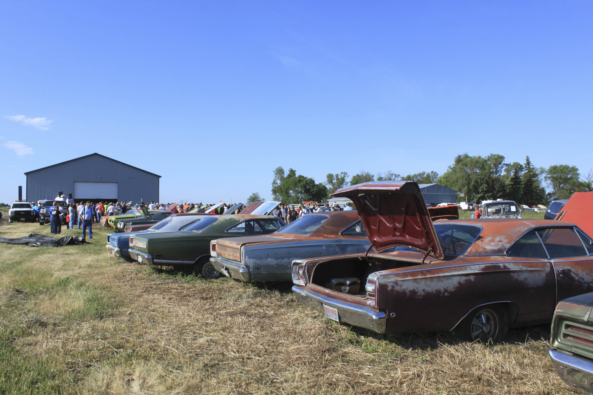 cars for sale at a farm auction