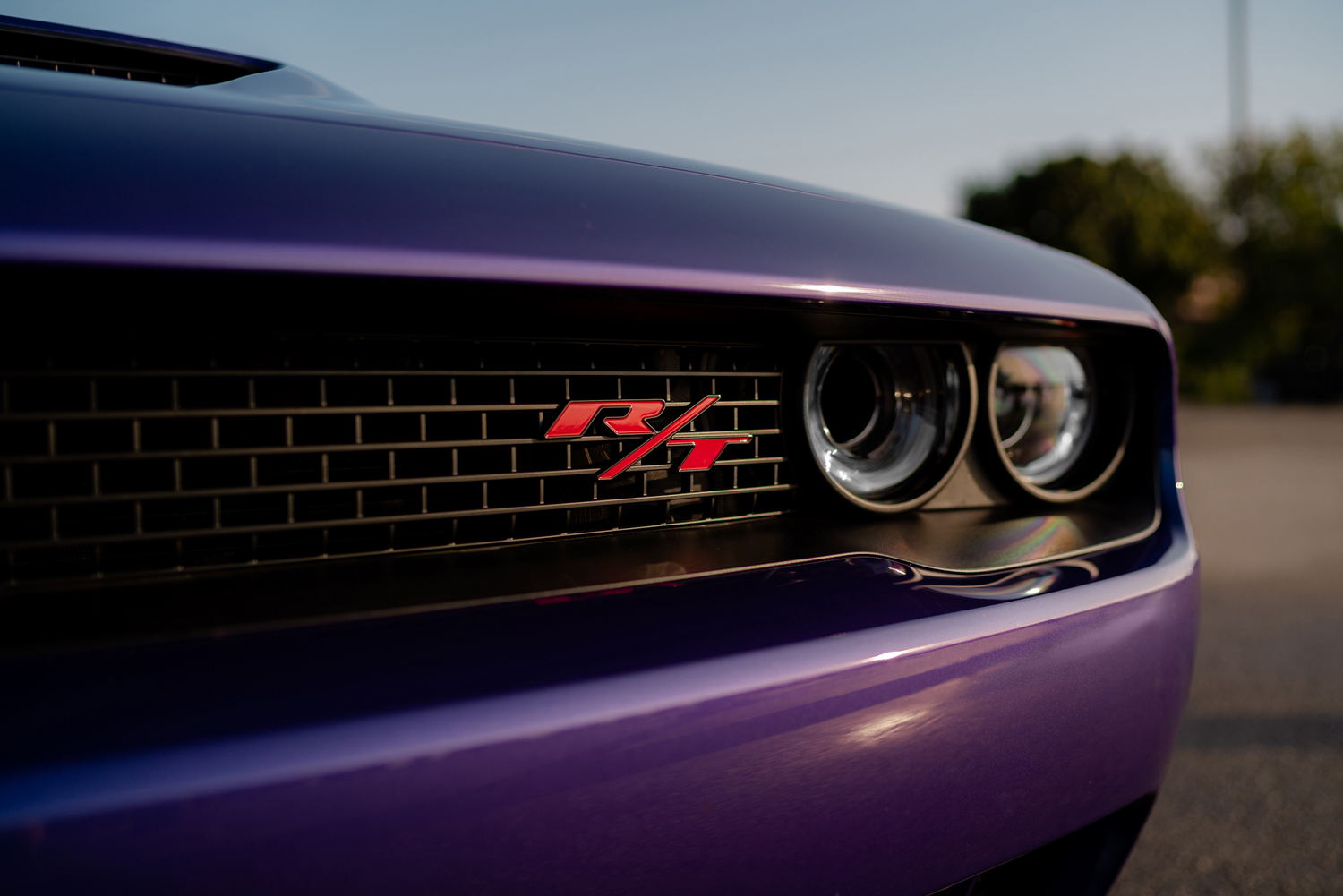 2019 Challenger R/T Scat Pack Widebody grille
