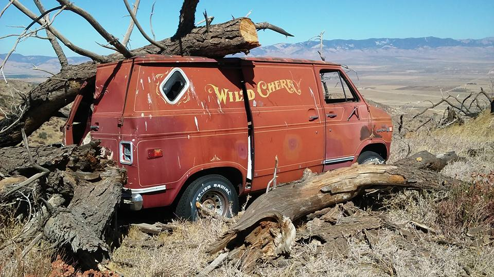 Wild Cherry Van found in mountains