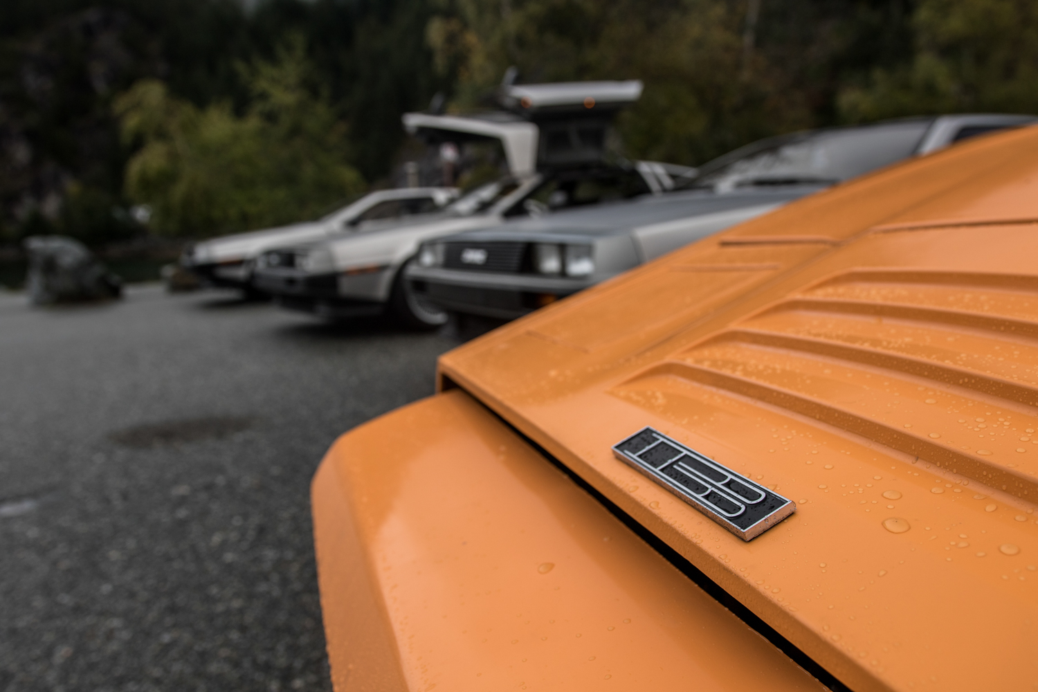 DeLorean DMC-12 vs Bricklin badge detail