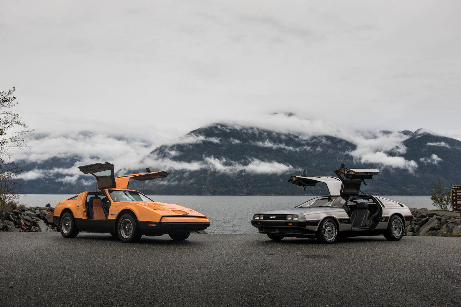 DeLorean DMC-12 vs Bricklin SV1 mountain