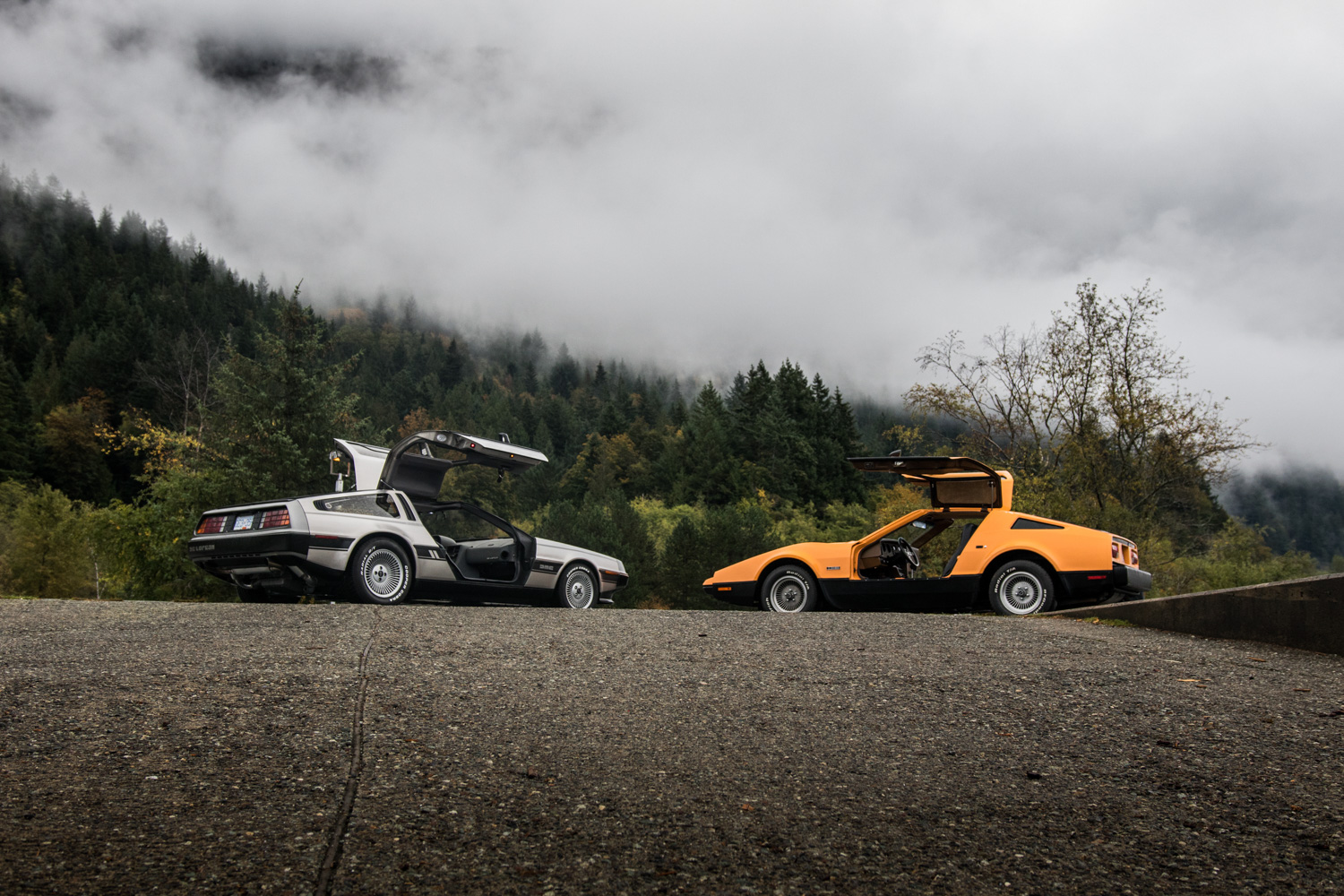DeLorean DMC-12 vs Bricklin SV1 rear sides