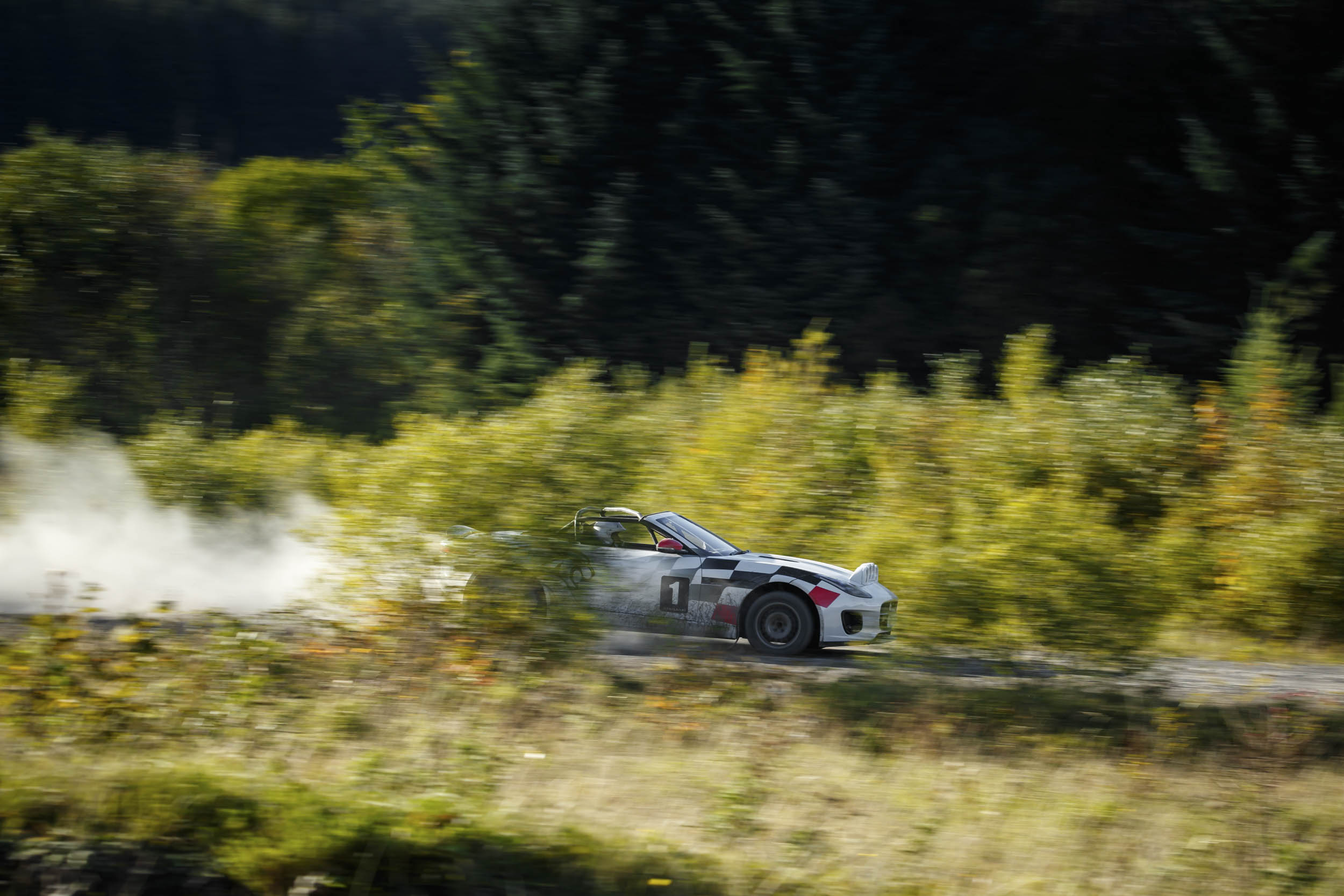 Jaguar F-type convertible rally car through the trees