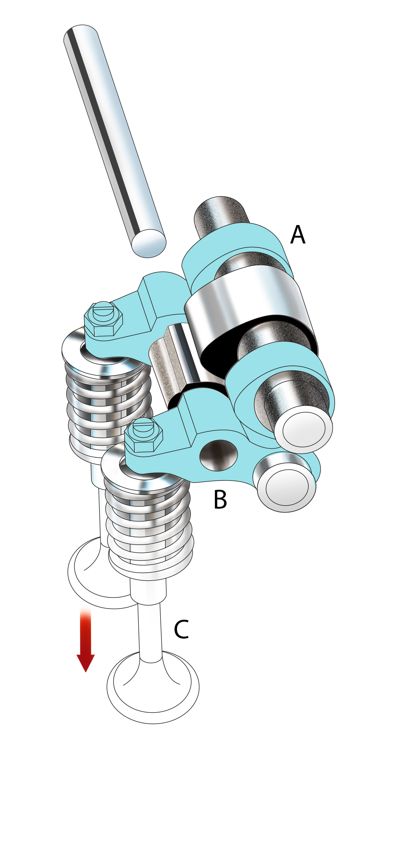 LOW RPM: The outer lobes (A) of the camshaft actuate the rocker arms (B) to press open the valves (C). This mechanism is common to the intake and exhaust valve pairs.