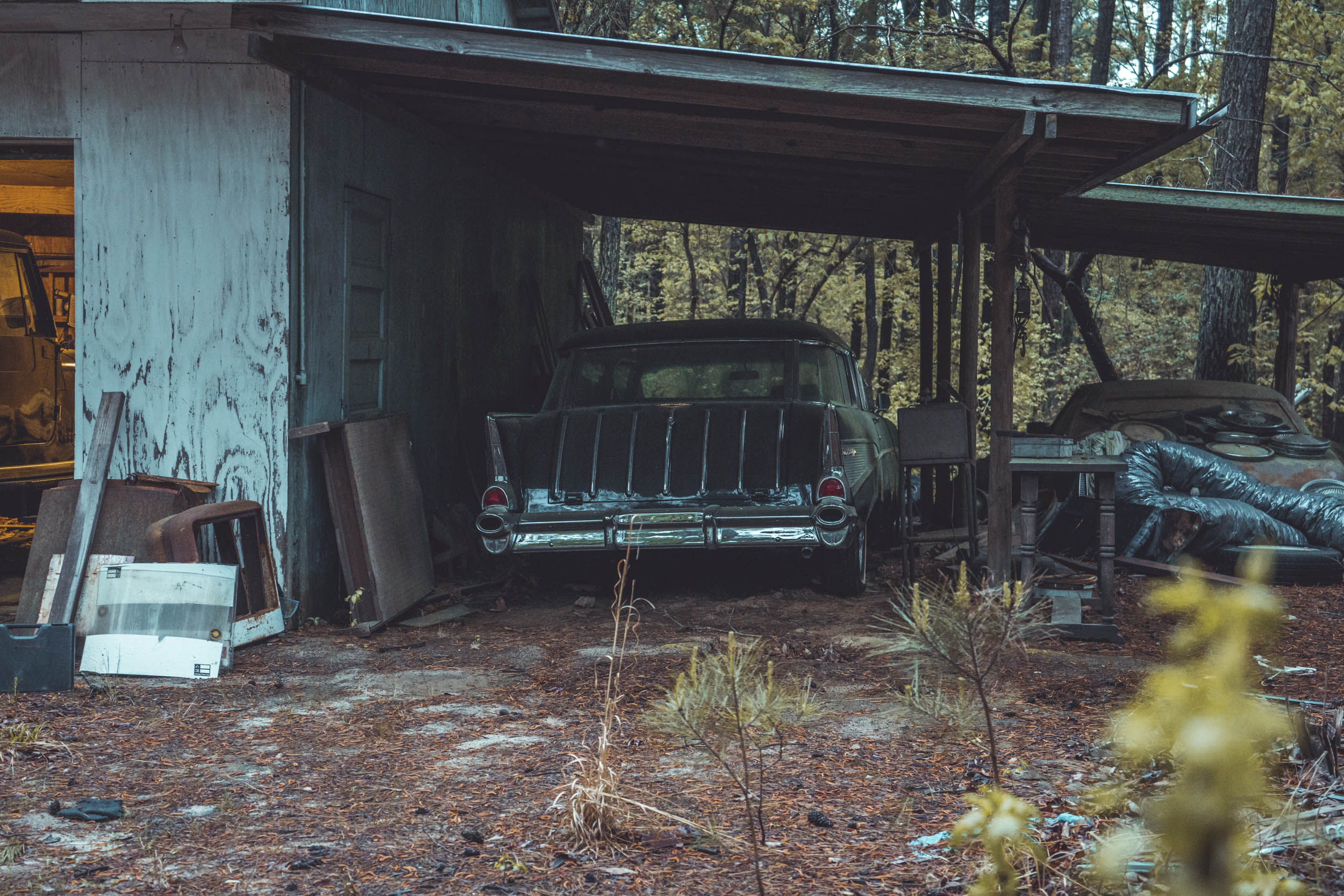 abandoned cars in the woods