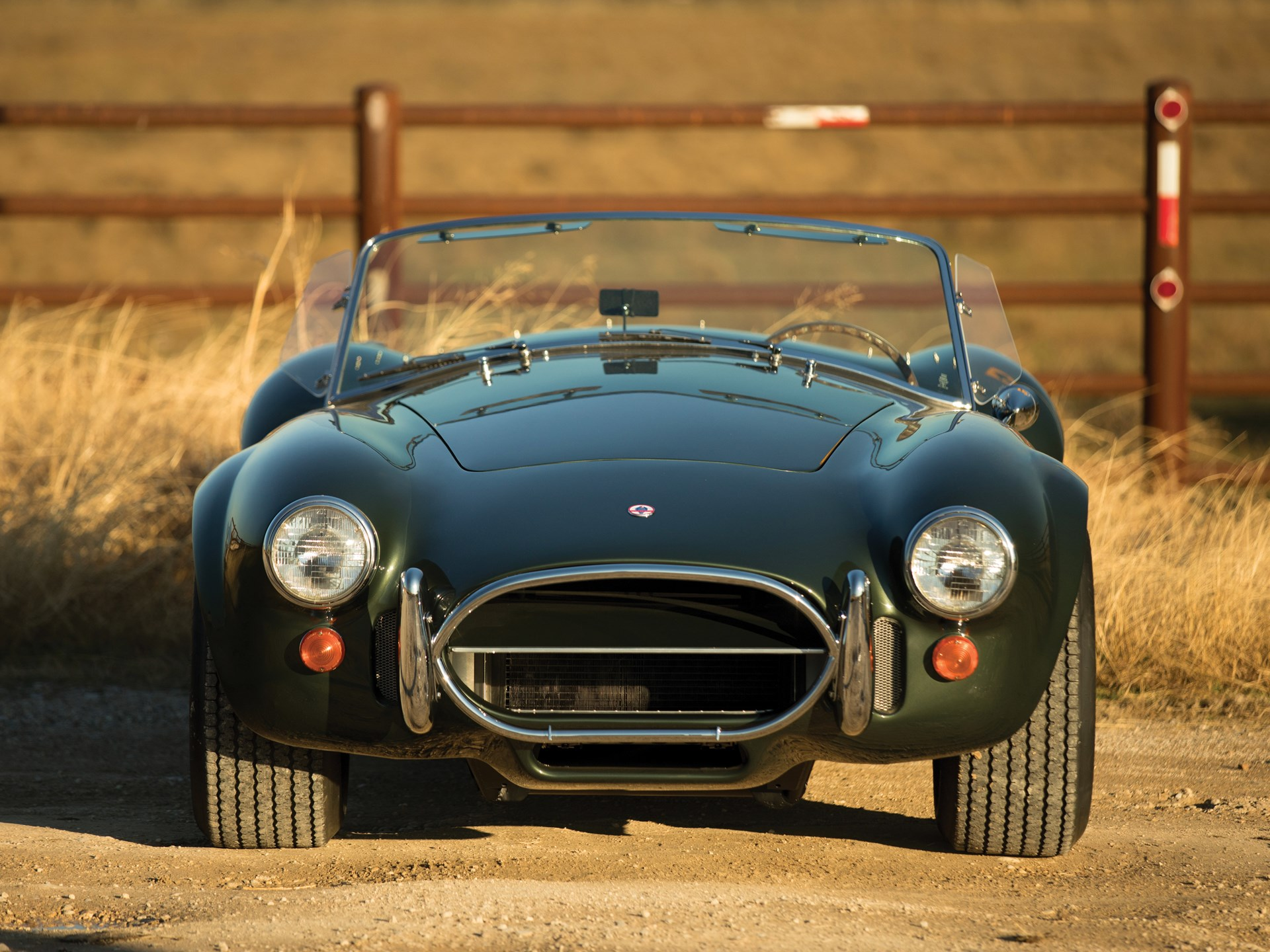 1967 Shelby 427 Cobra front end