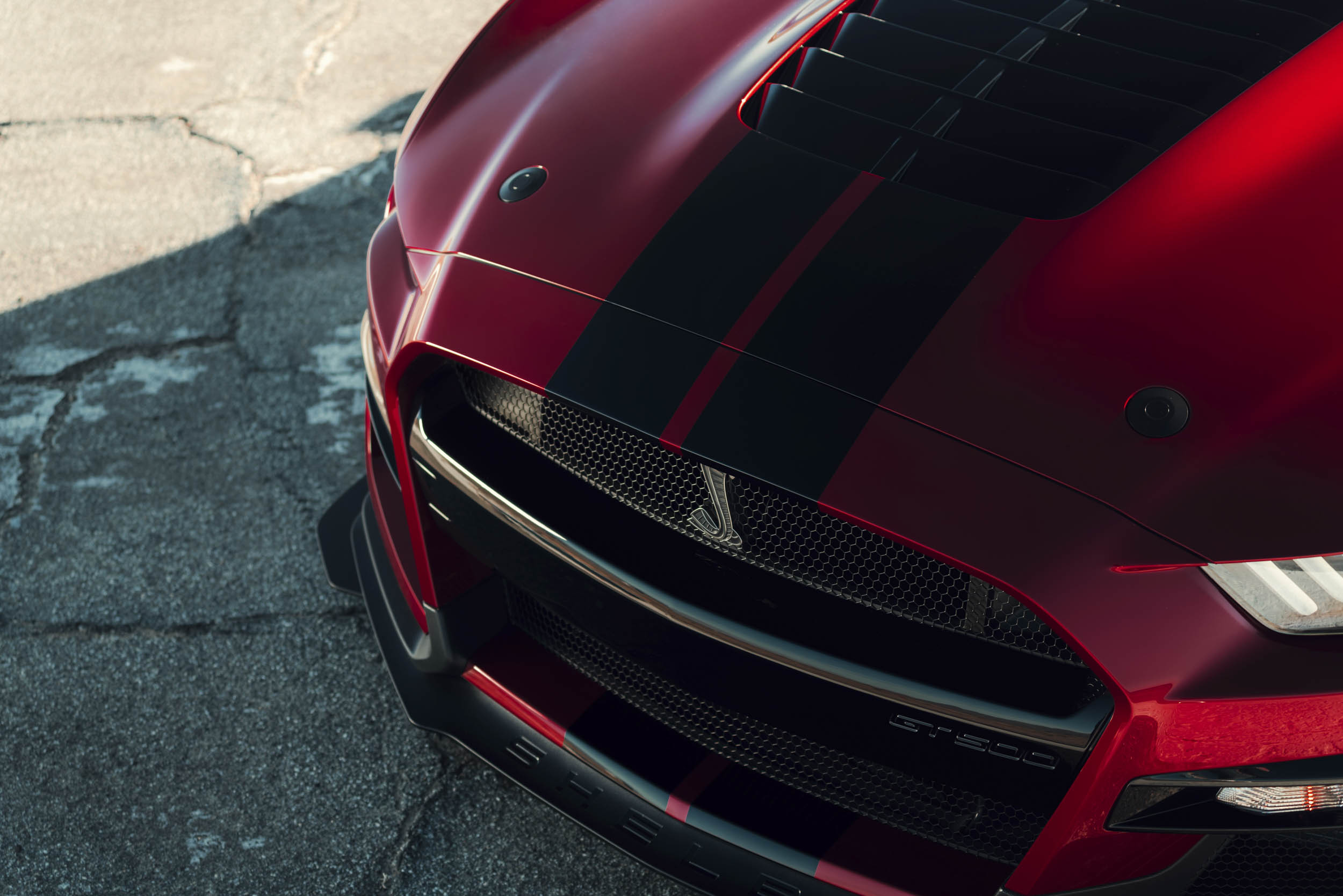 2020 Mustang Shelby GT500 grille snake badge