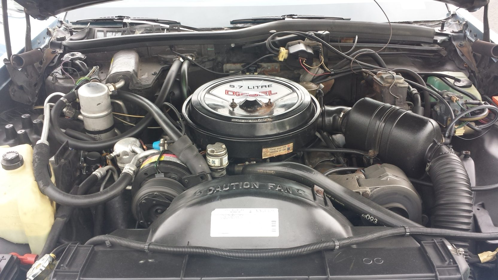 1981 Oldsmobile Delta 88 Royal engine