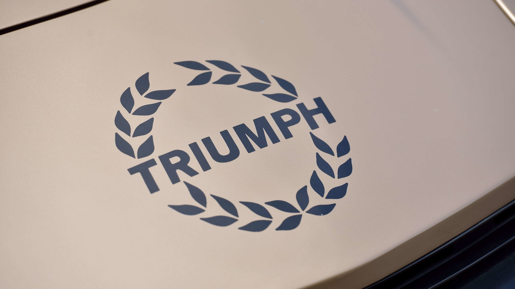 1979 Triumph TR7 hood detail
