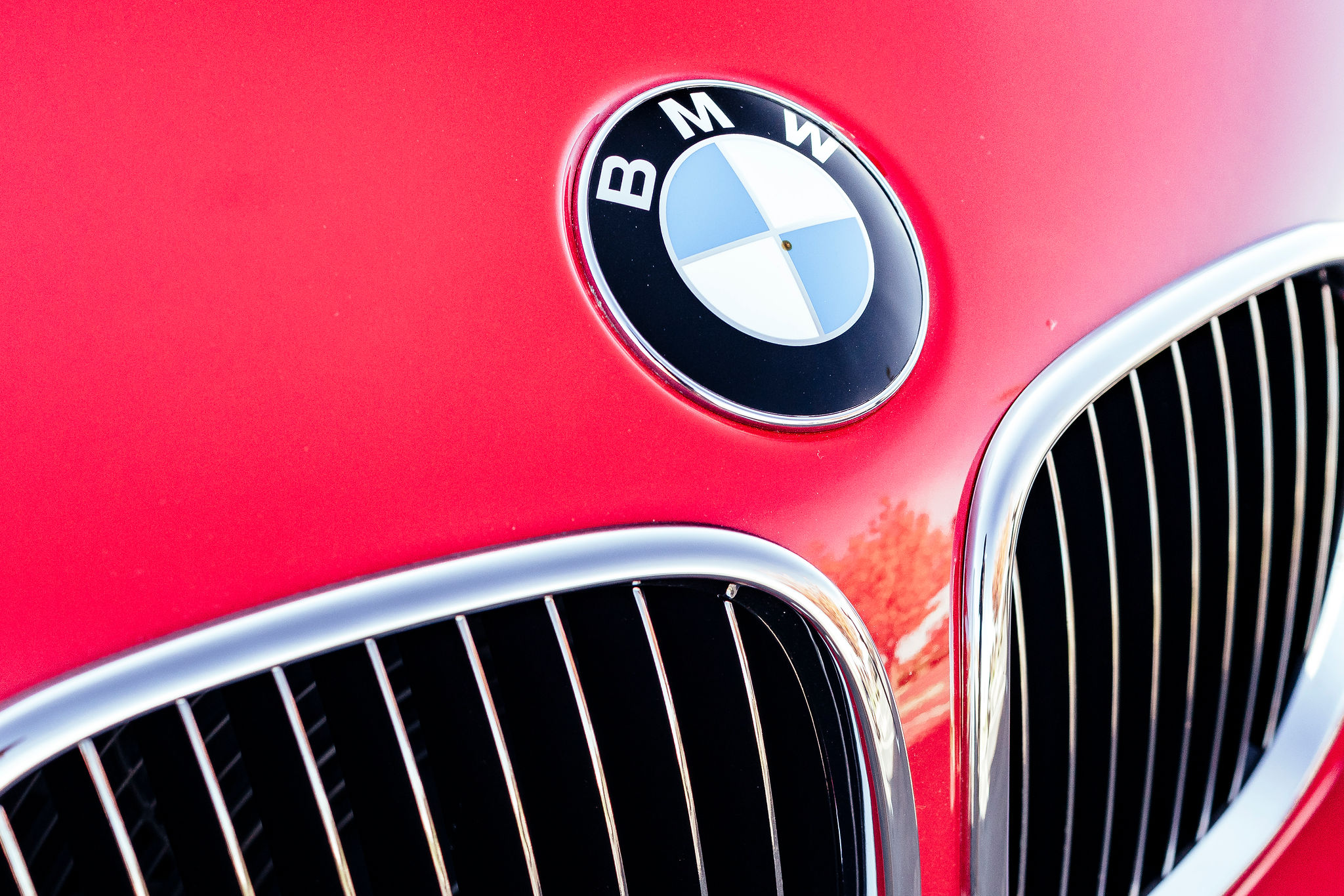 2002 BMW Z3 M Coupe badge hood