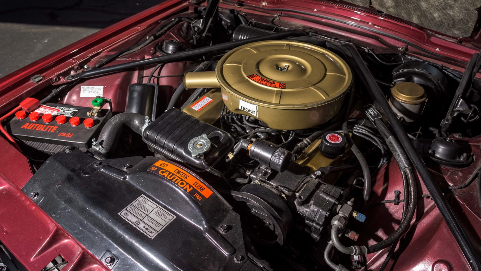 1965 Ford Thunderbird engine
