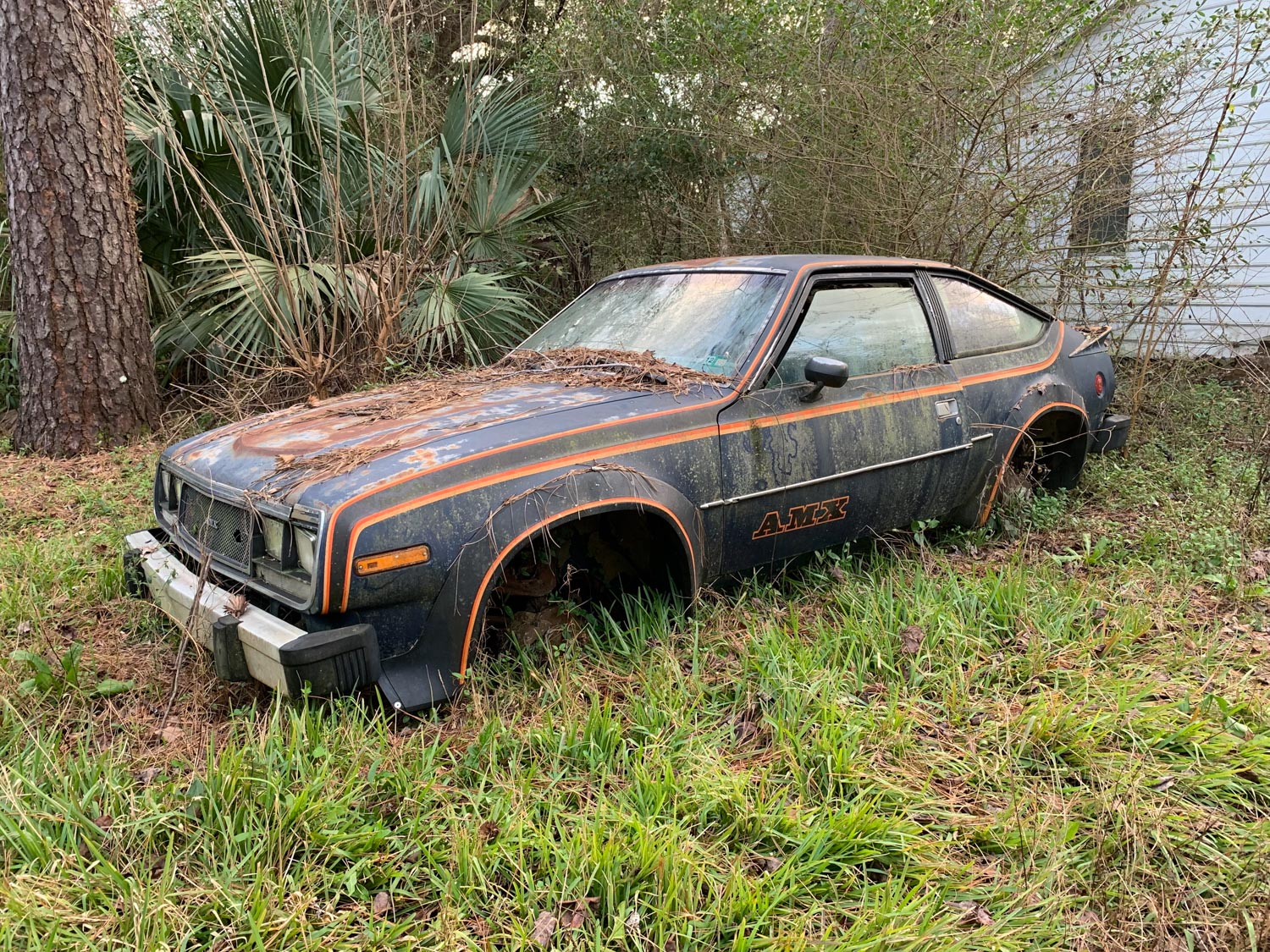 Derelict amc amx in woods
