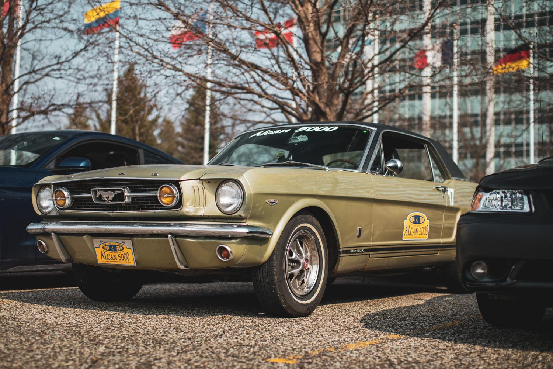 66 Mustang john li