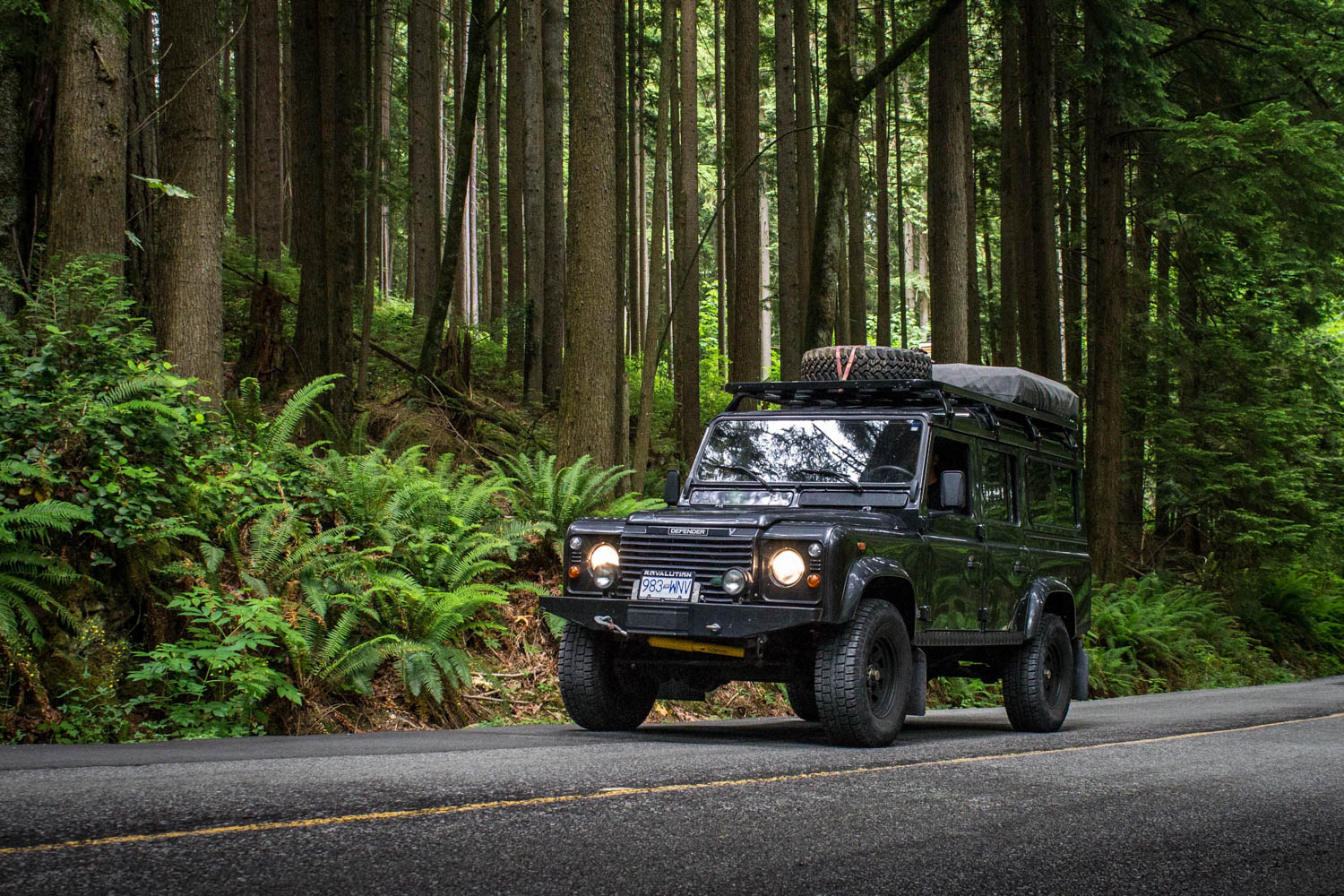 Land Rover Defender 110 TD5 in the woods