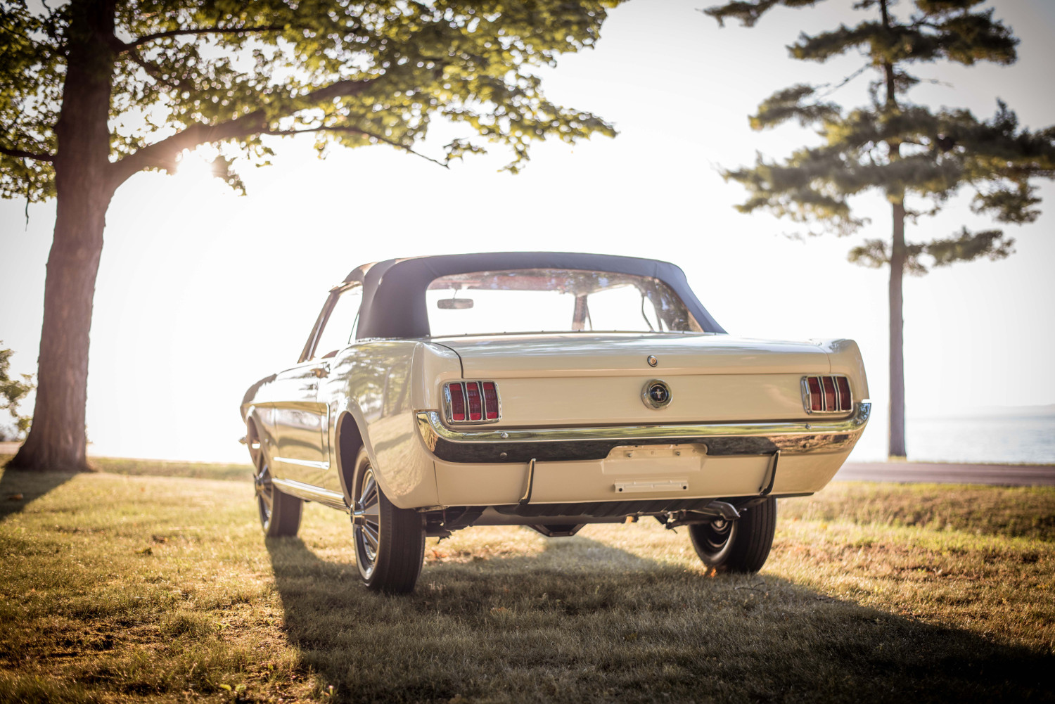 1965 Ford Mustang rear 3/4