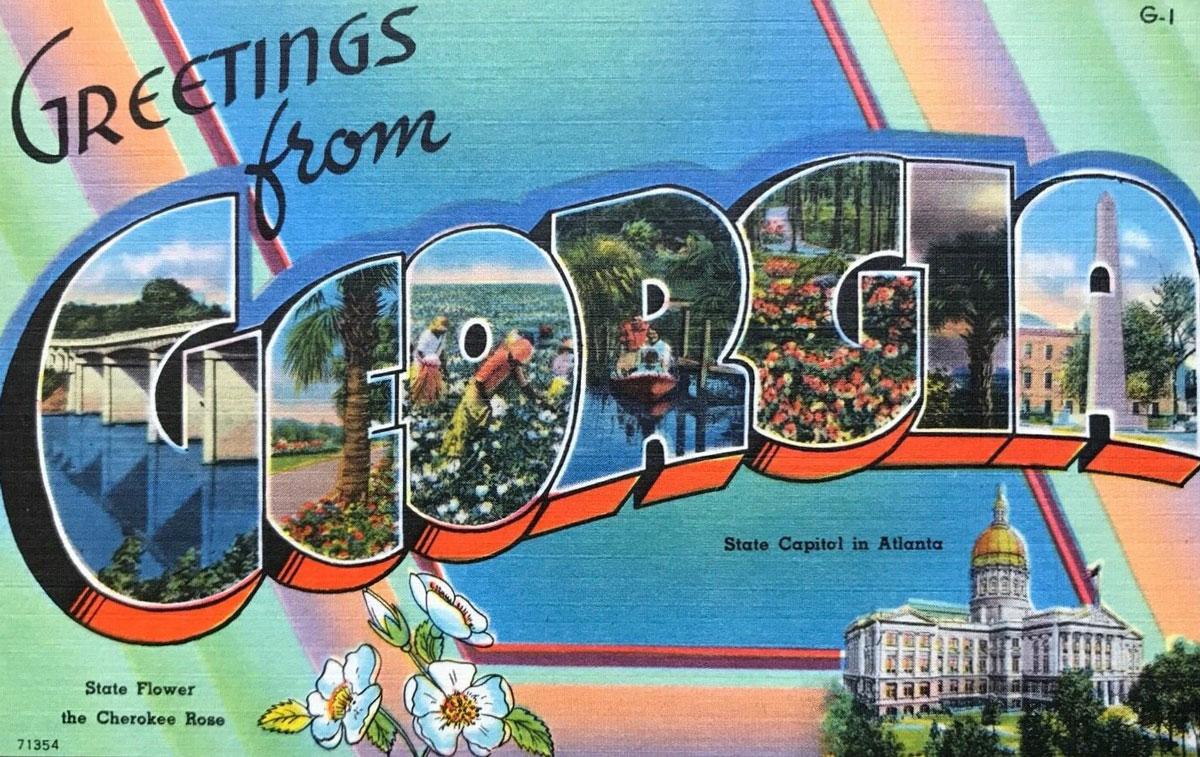 Georgia State Banner