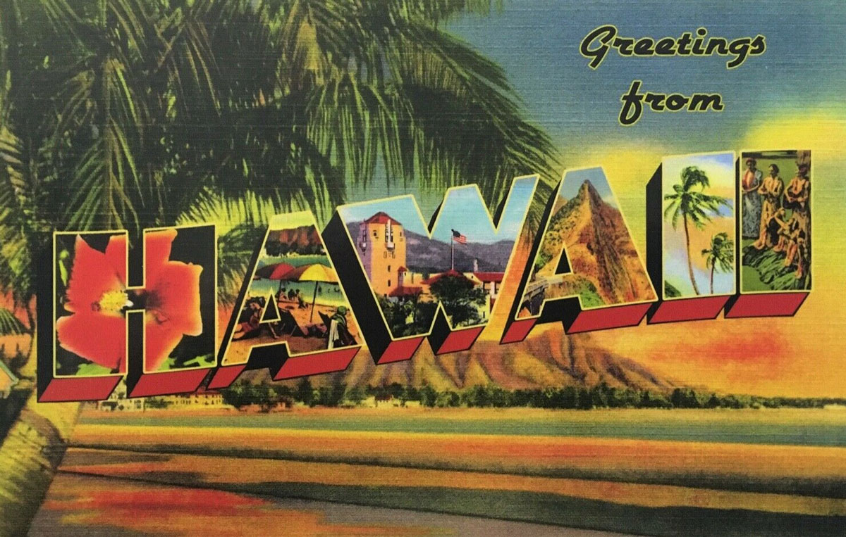 Hawaii State Banner