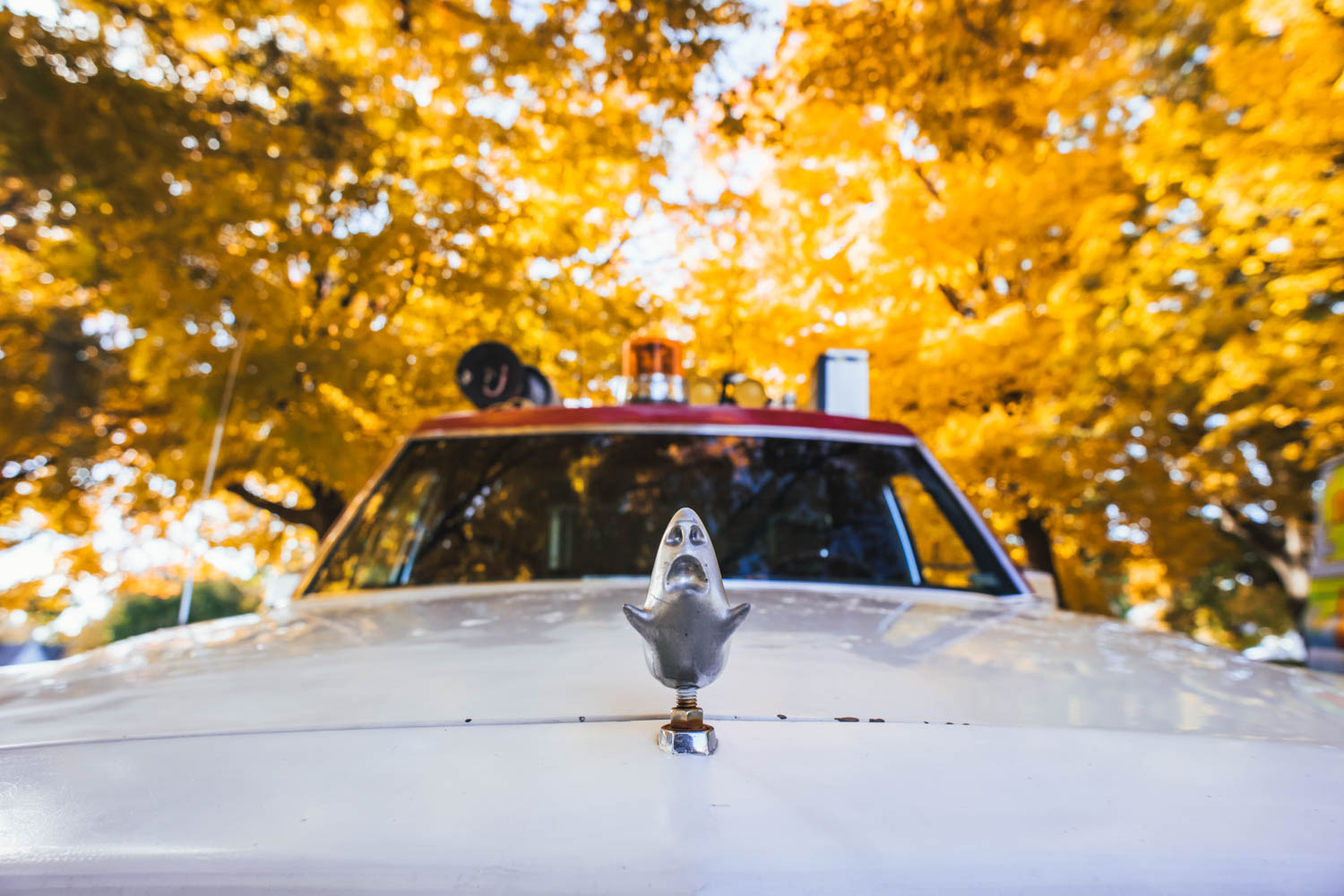 hood ornament of the ECTO-1