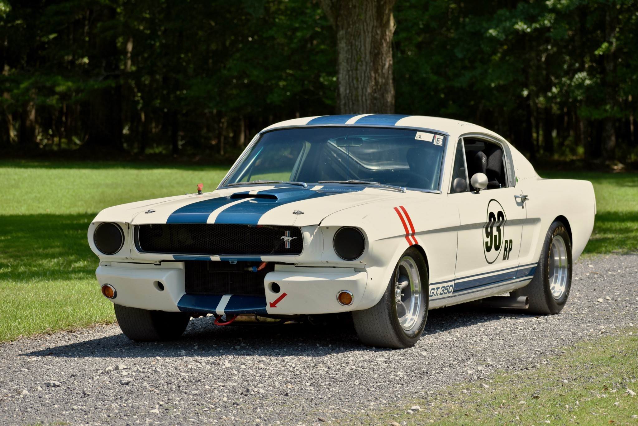 Race a vintage GT350 on a budget with this Shelby replica thumbnail