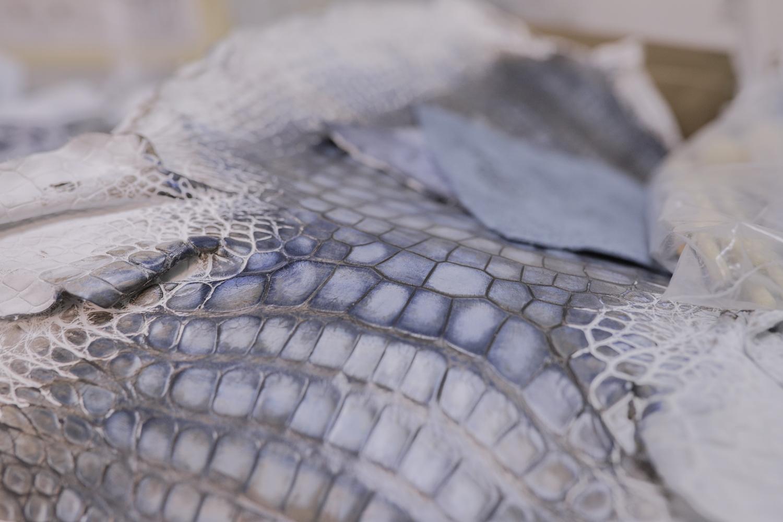 Icon Hudson Derelict Alligator