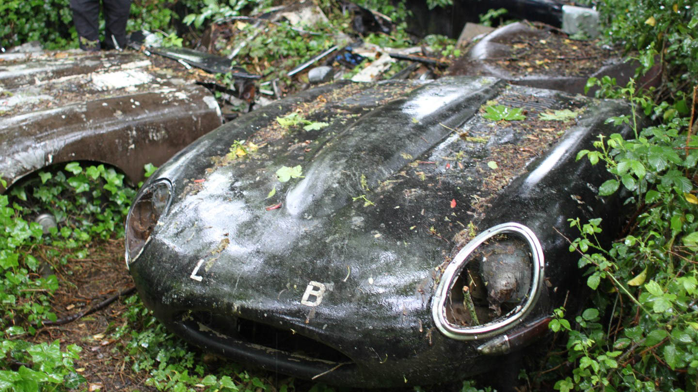 E-Type UK frees 4.2 E-Type Fixed Head Coupe from shrubbery thumbnail