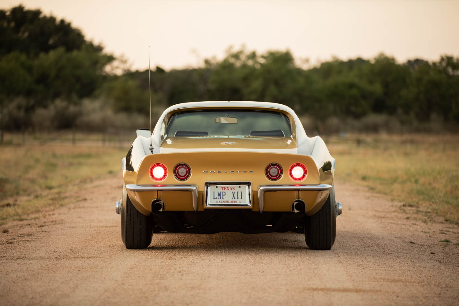 "1969 Corvette Stingray Alan Bean ""Astrovette"""