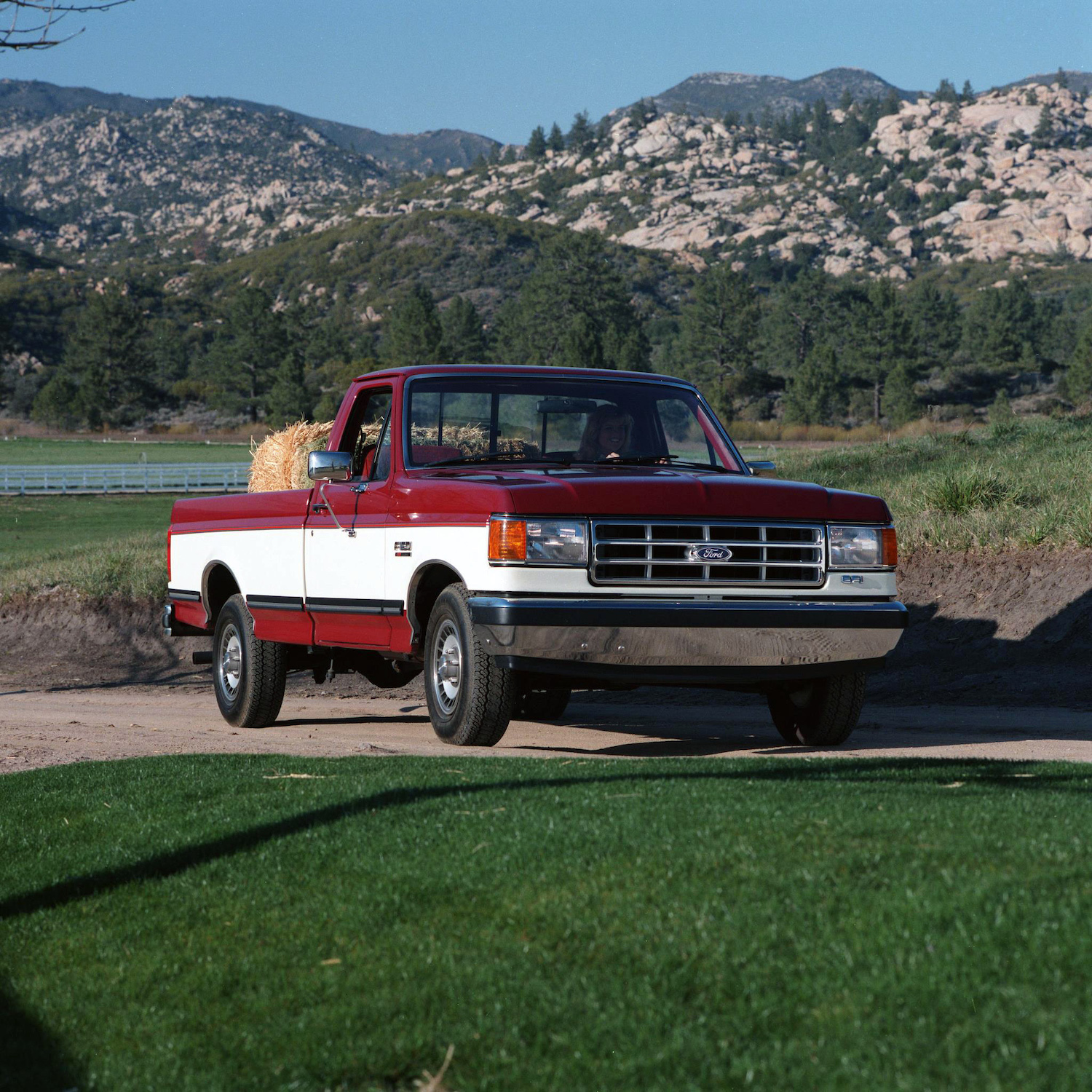 1988 Ford F-150 Regular Cab