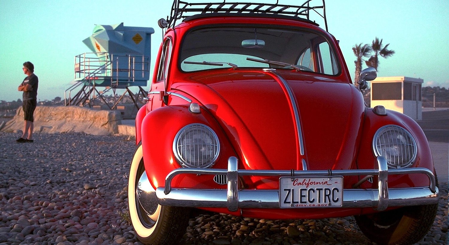 Zelectric Bug