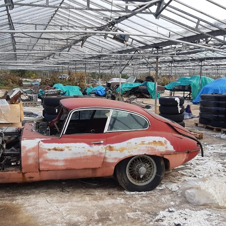 Over 30 classic Jaguars come to light in a British greenhouse