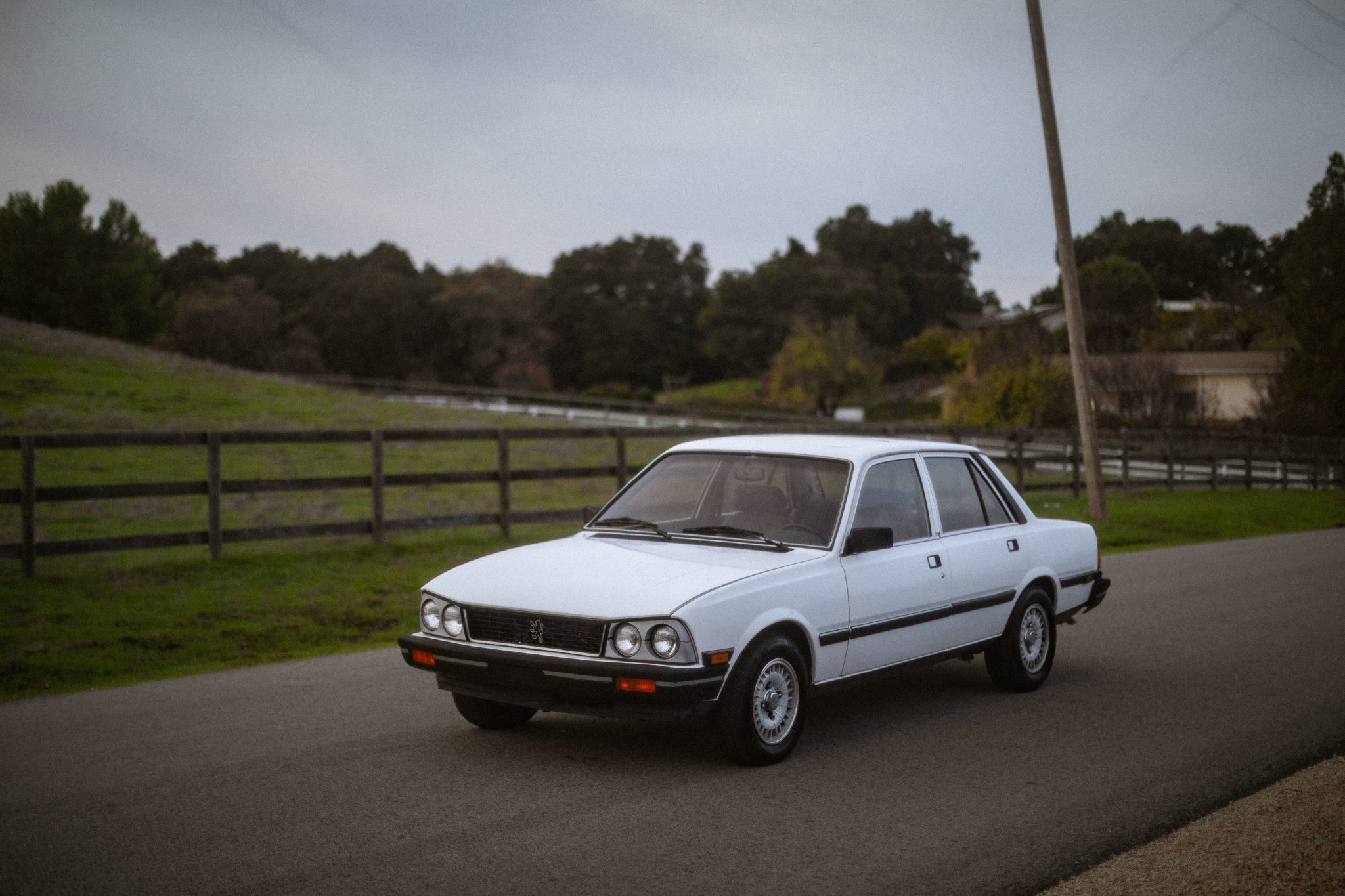 1982 Peugeot 505 S