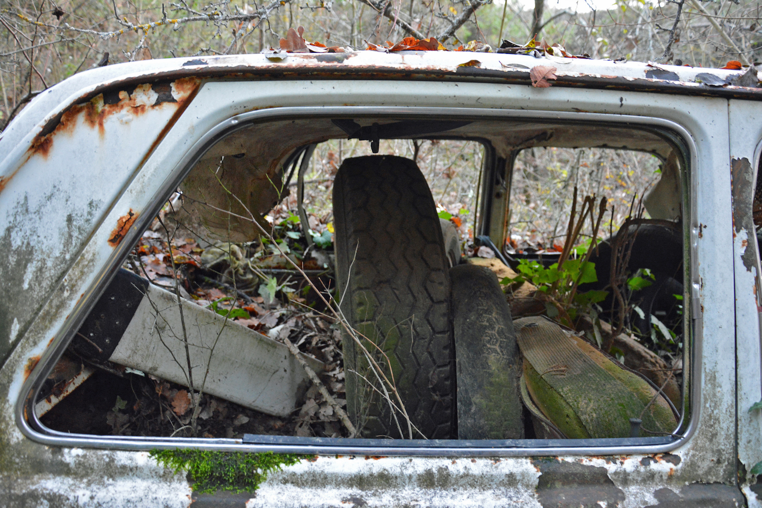abandoned old car rear window