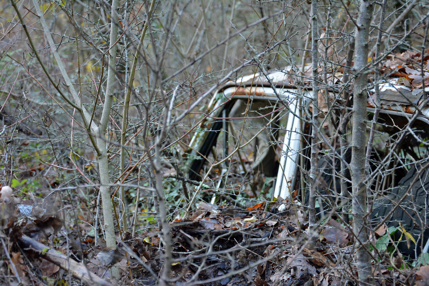 abandoned old car buried