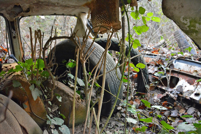 inside abandoned buried old car