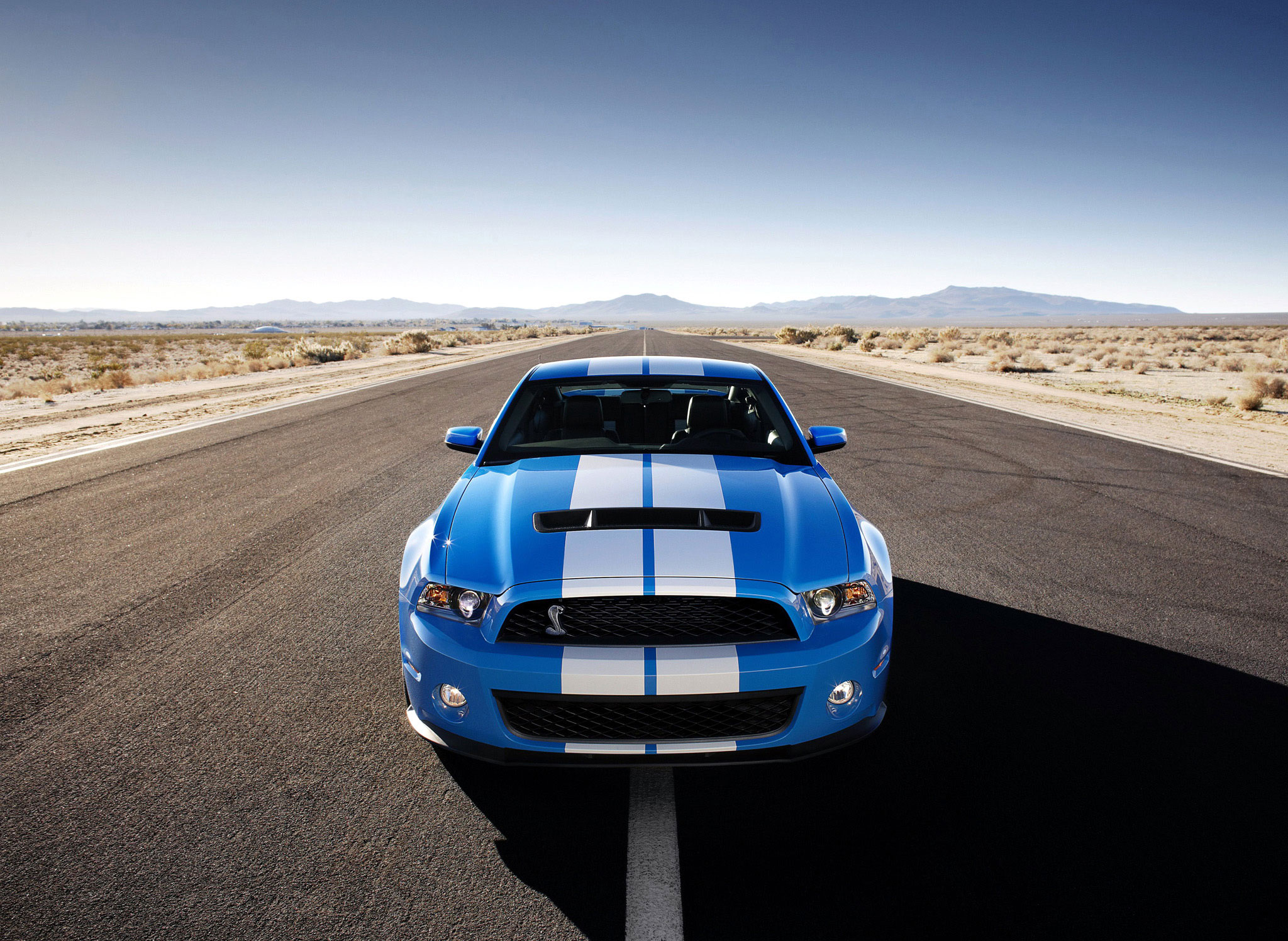The 2007—2014 Mustang GT500 is already a collectible thumbnail