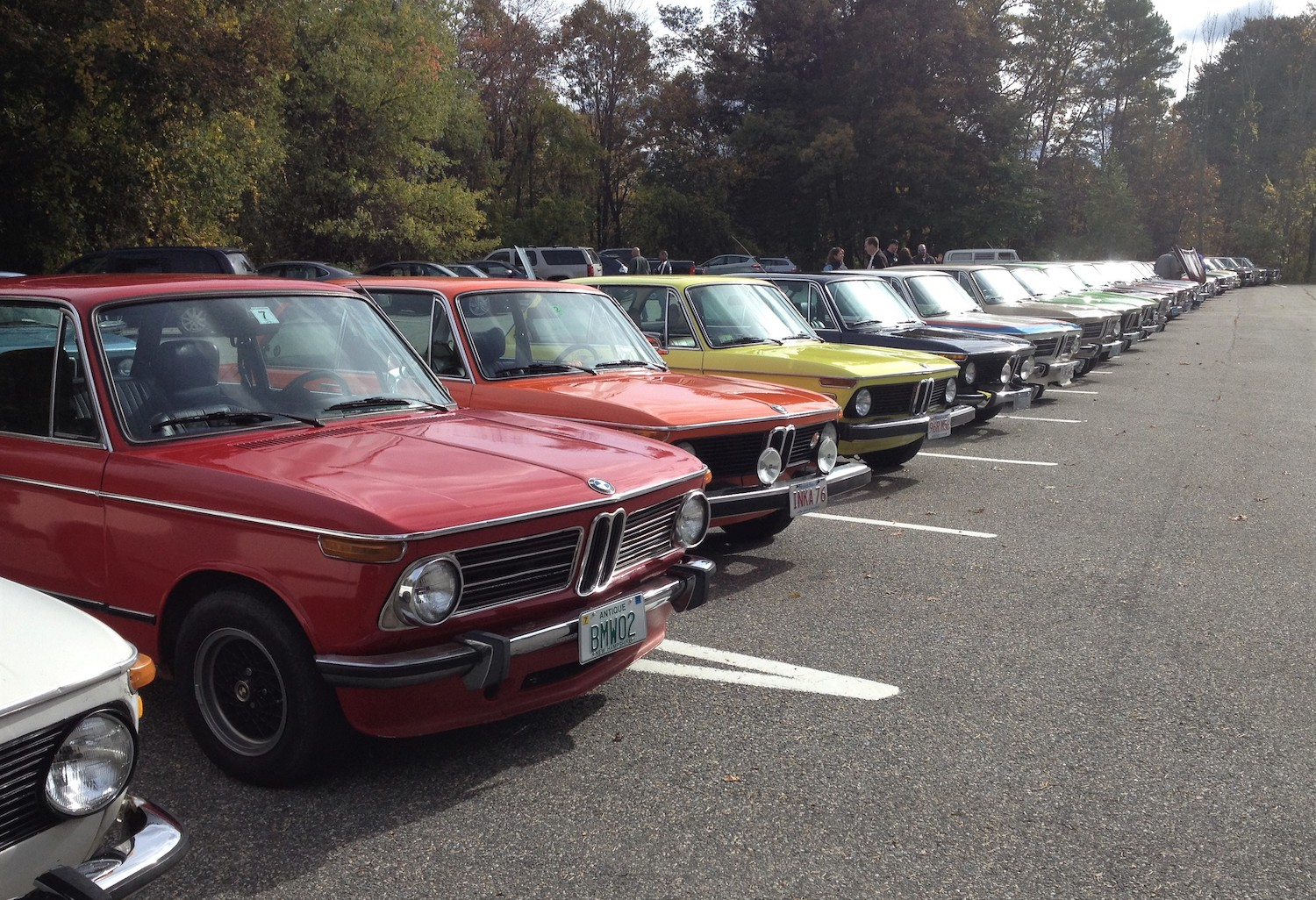 bmw 2002s at noreast spring event