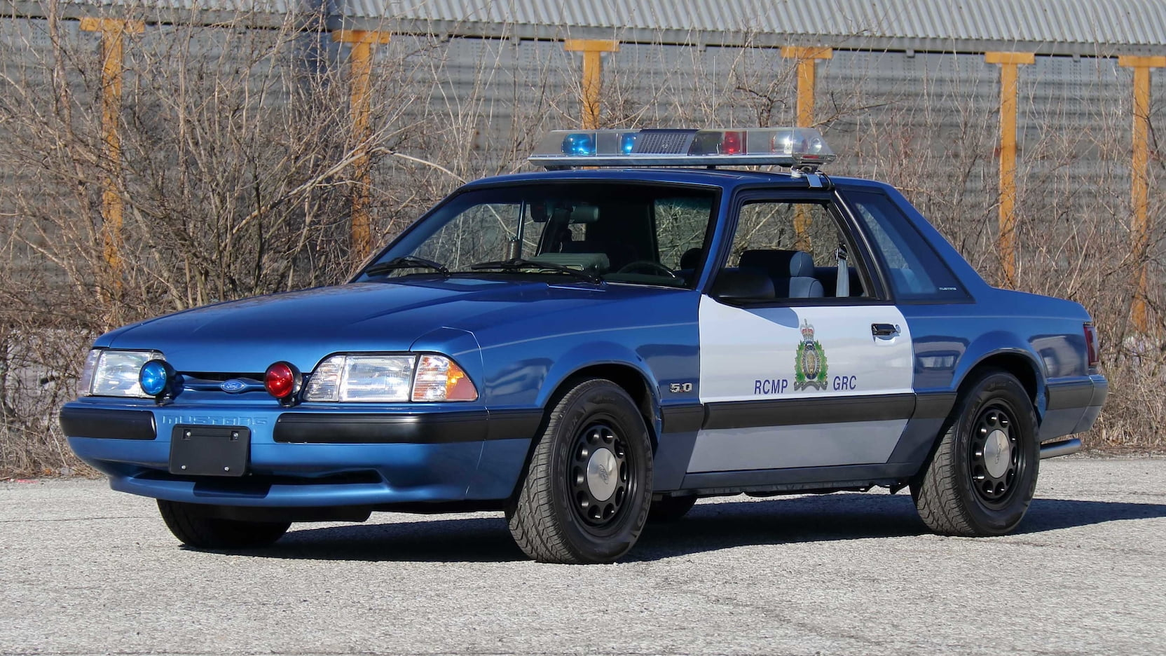 This rare Canadian police Mustang could become your next trusty steed thumbnail