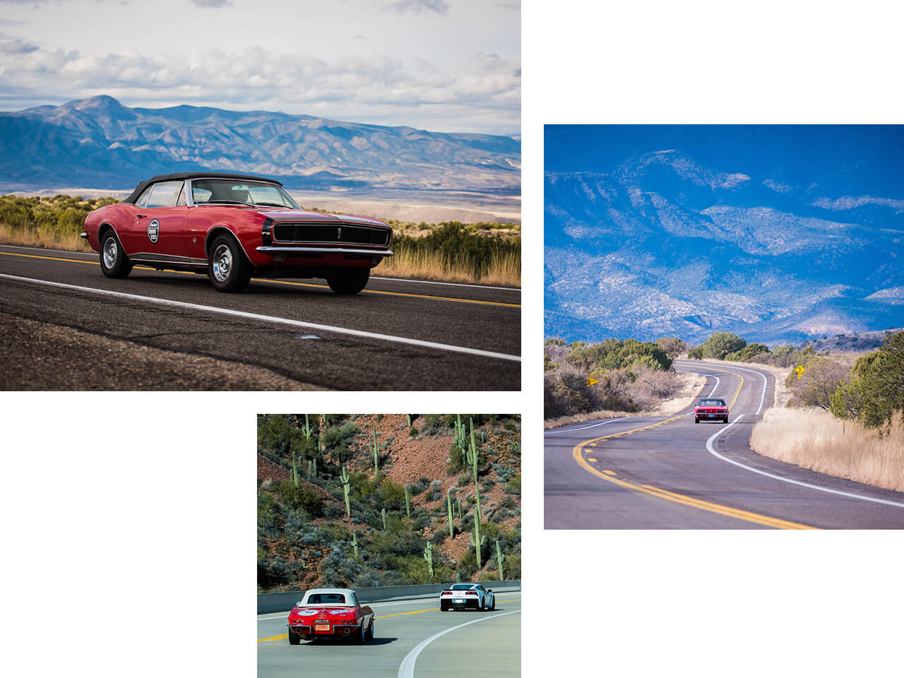 Collector vehicles driving out on an open road with mountains in the background and cacti off in the distance.
